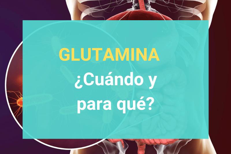 Glutamina - ¿Cuándo y para qué?